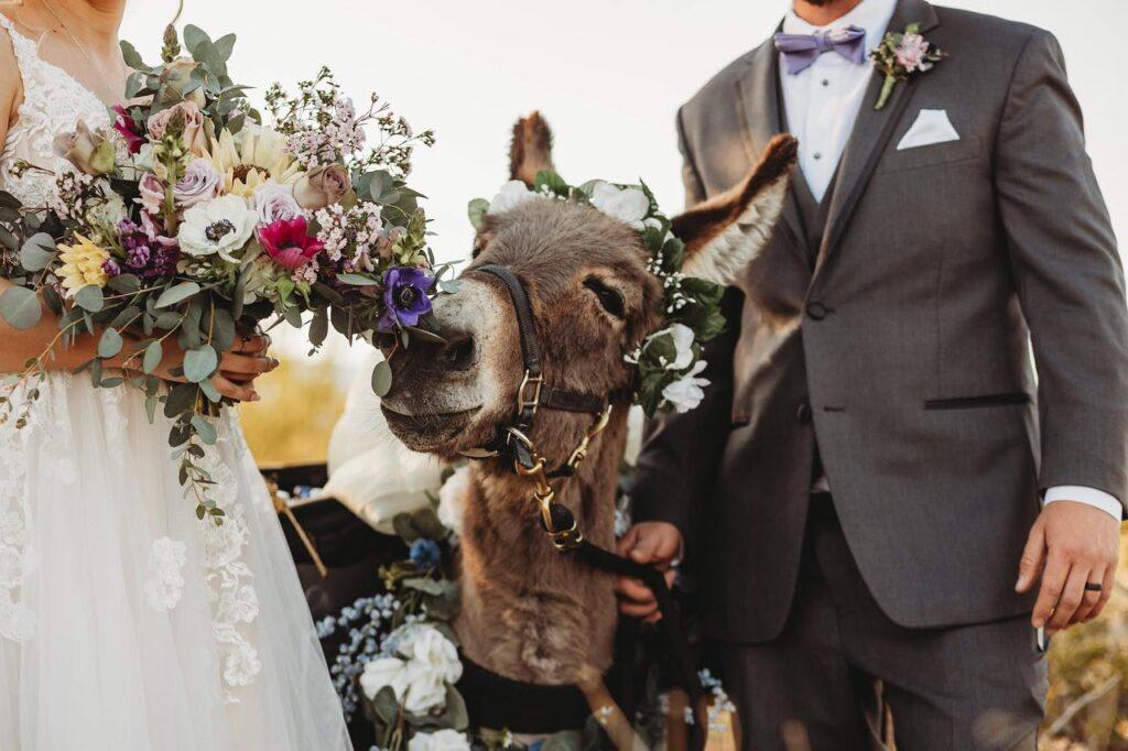 Arizona wedding, ceremony, reception, wedding dress, groomsmen, bridesmaid, azvenue, phoenix, azbride, azwedding, phxwedding, arizonawedding, arizonabride, love, ourdoorwedding, weddingceremony, weddingreception, phxevents, magical, bettertogether, thisislove, lovewins, loveislove, marriageequality, barnwedding, weddingwire, theknot, shesaidyes, bride, AZ Bride, Phoenix Bride, weddingplanning, weddinggiveaway, lovestory, whatsyourlovestory, everysquareastory